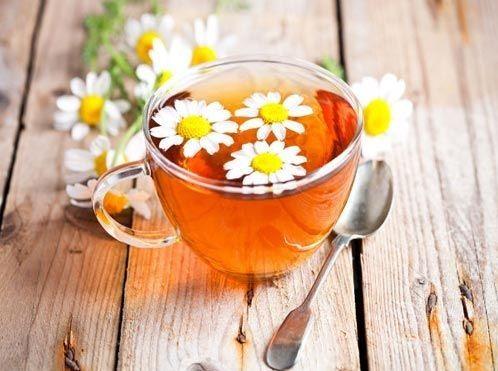 Trà hoa cúc thơm dịu dàng cho một chiều cuối đông