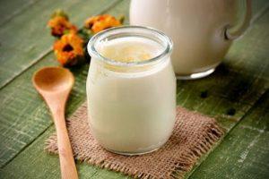 Cách làm sữa chua từ nấm Kefir thơm ngon dinh dưỡng